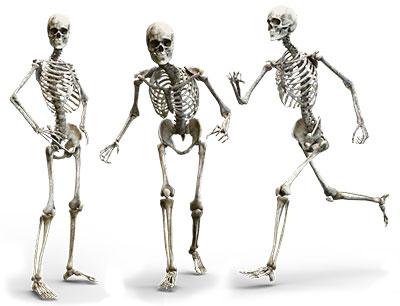 Bones Healthy