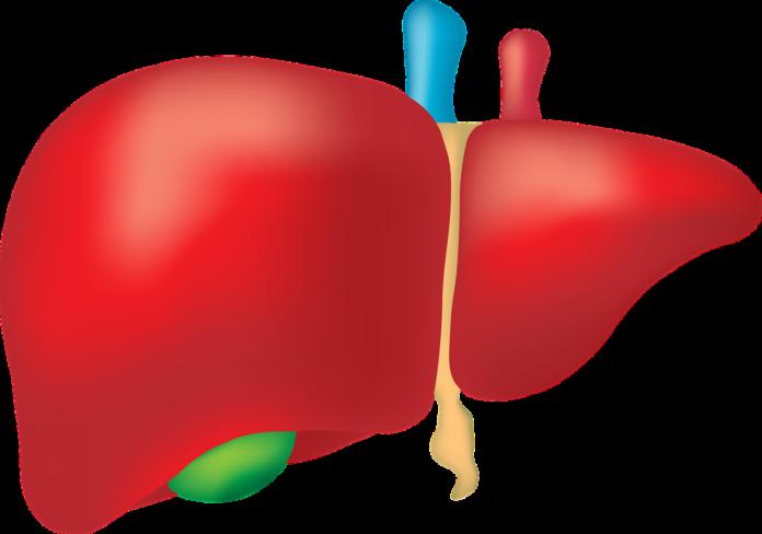 Gallbladder Diets