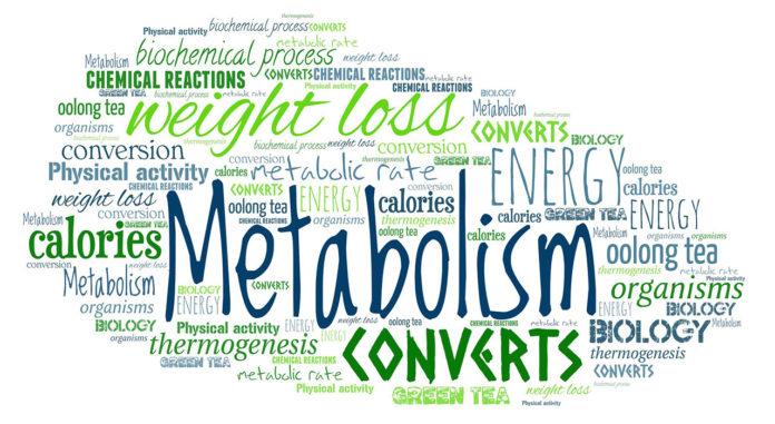 Aging Metabolism