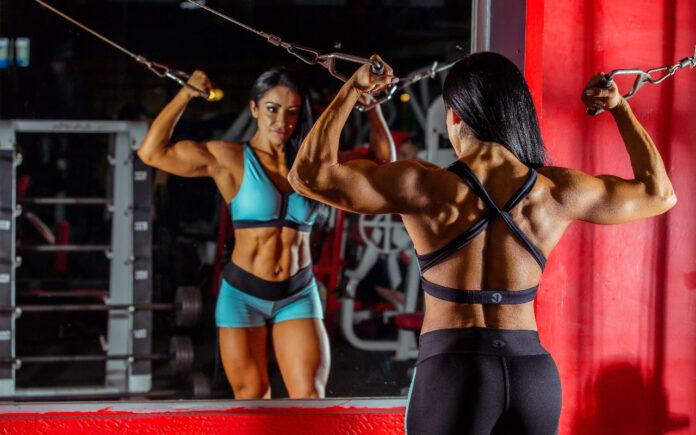 Transform Workouts
